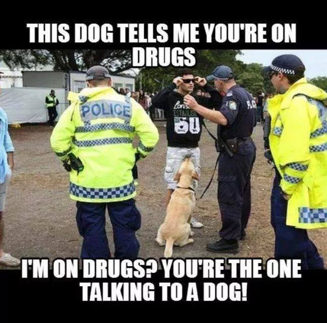 police-talking-to-dogs-on-drugs 2